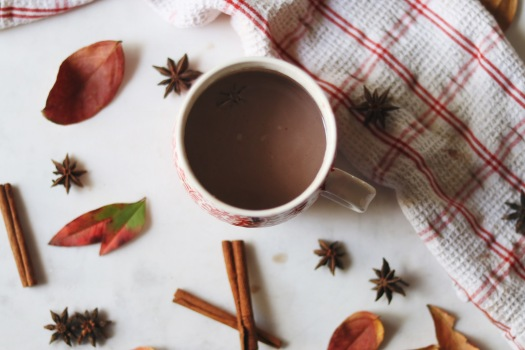 Fall pumpkin spiced hot chocolate